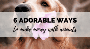 6 adorable ways to make money with animals and pets