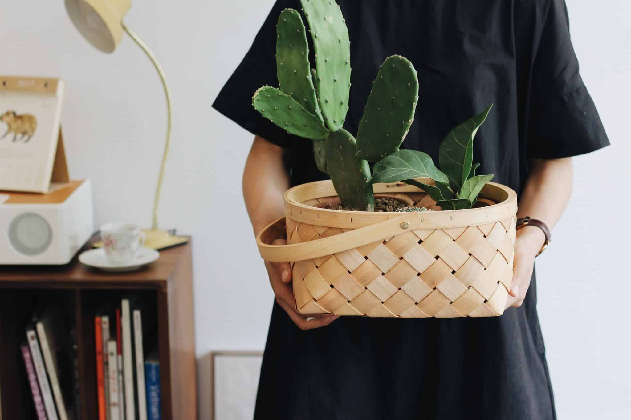 saving money for a home - consider moving in temporarily with friends or family (picture of woman holding plant)