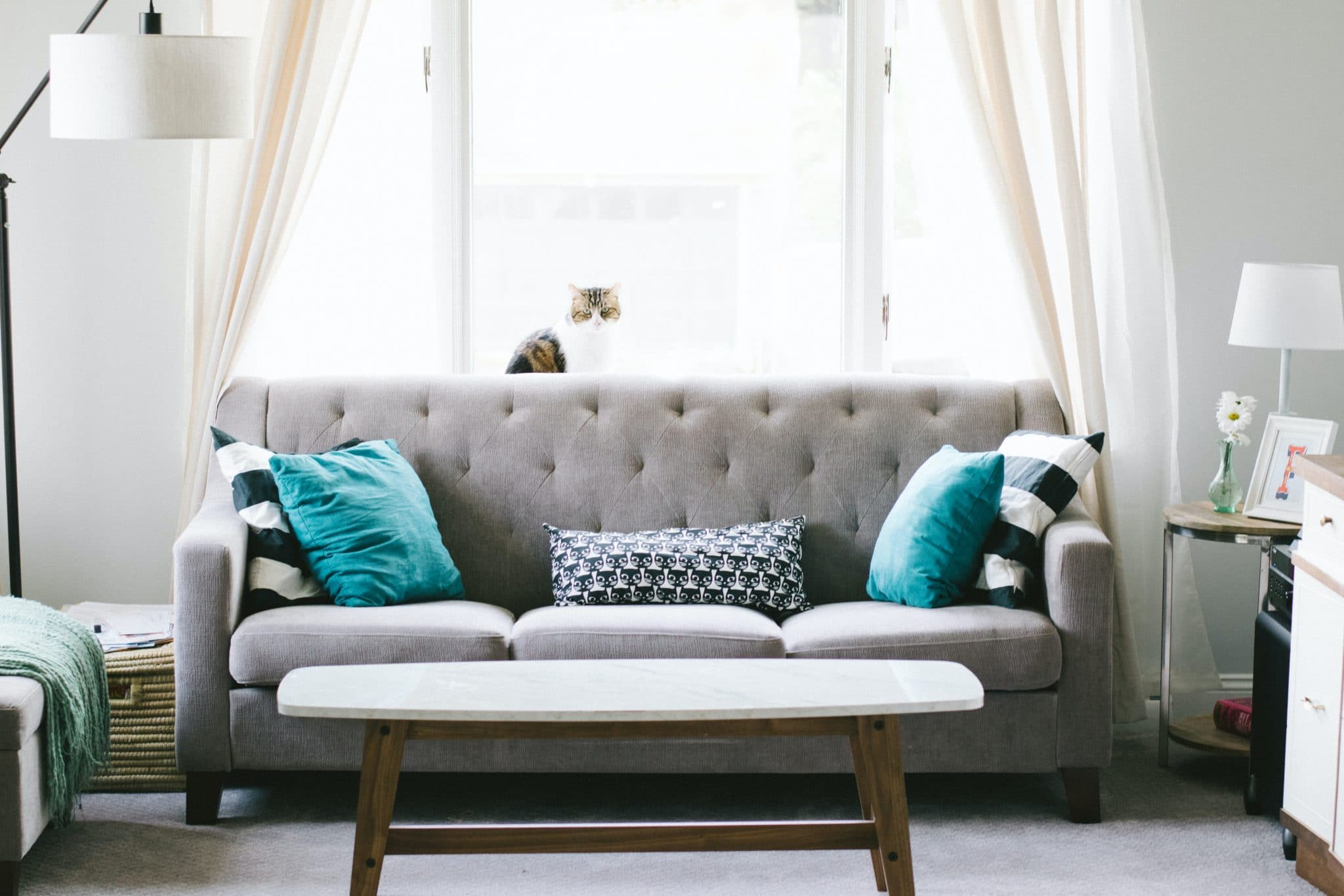 a living room with sofa in a new home